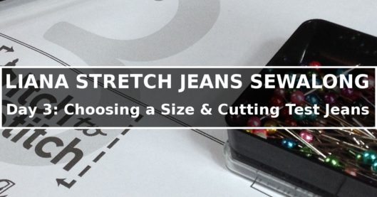 Liana Stretch Jeans Sewalong Day 3